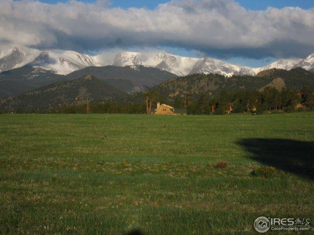 Deer Path Ct, Estes Park, CO 80517 (MLS #823959) :: 8z Real Estate