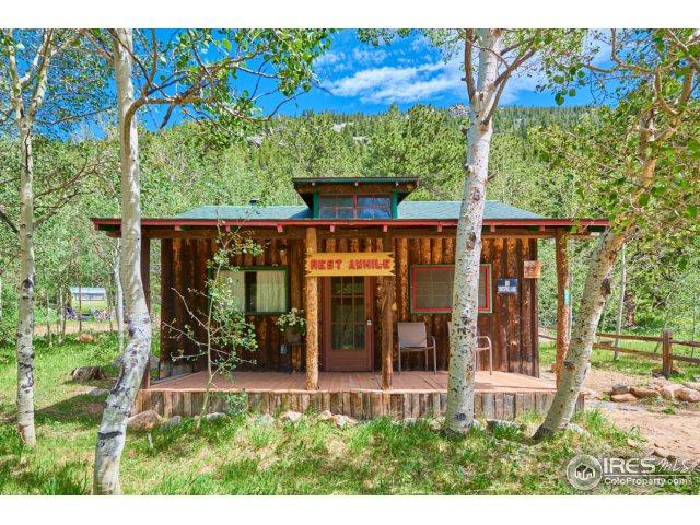 945 Klondike Ave, Nederland, CO 80466 (MLS #824185) :: 8z Real Estate