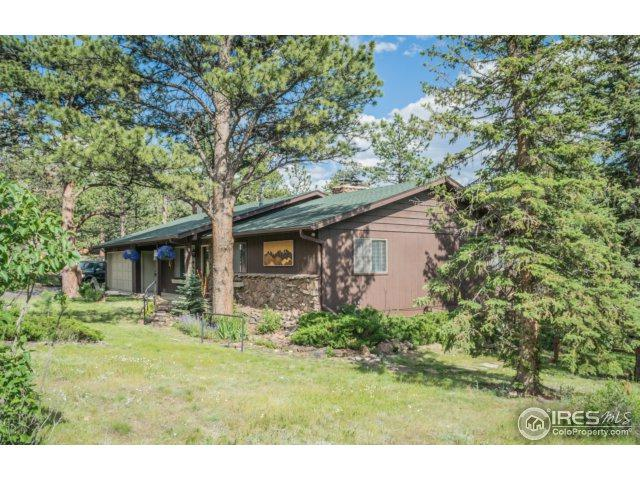 920 Ramshorn Dr, Estes Park, CO 80517 (MLS #824388) :: 8z Real Estate