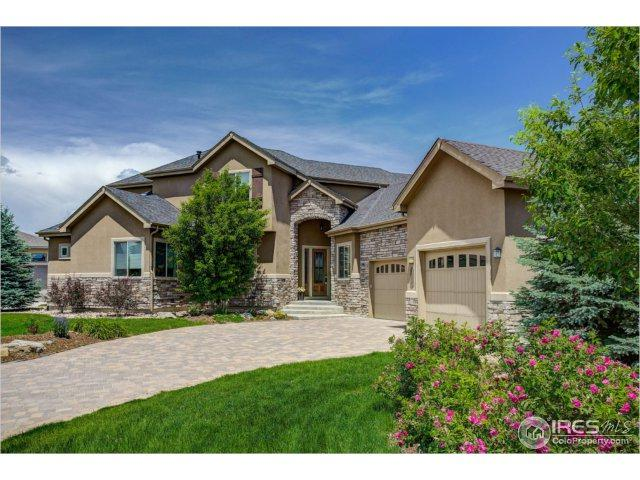 2317 Block Ct, Erie, CO 80516 (MLS #824389) :: 8z Real Estate
