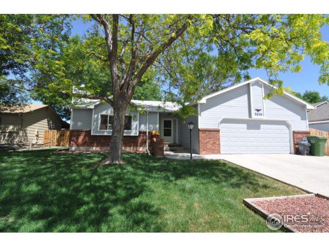 3450 White Ash Ct, Loveland, CO 80538 (MLS #824416) :: Kittle Real Estate