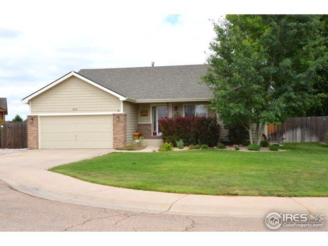 334 Amber Dr, Windsor, CO 80550 (MLS #824511) :: Kittle Real Estate