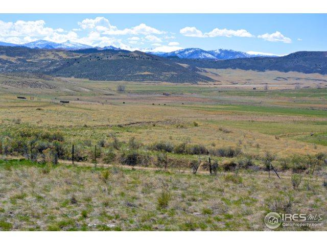 0 County Road 80, Wellington, CO 80549 (MLS #824554) :: The Daniels Group at Remax Alliance
