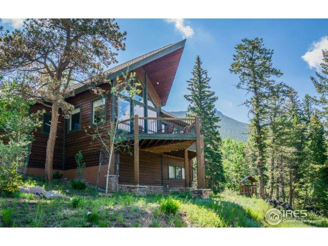 3411 Eaglecliff Cir Dr, Estes Park, CO 80517 (MLS #824593) :: 8z Real Estate