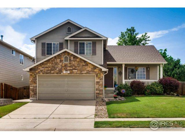 7403 Fountain Dr, Fort Collins, CO 80525 (MLS #824597) :: 8z Real Estate