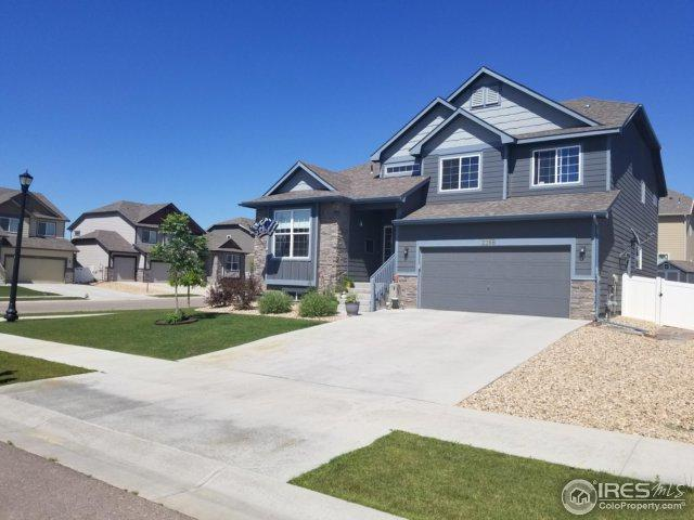 2268 Talon Pkwy, Greeley, CO 80634 (MLS #824679) :: The Daniels Group at Remax Alliance