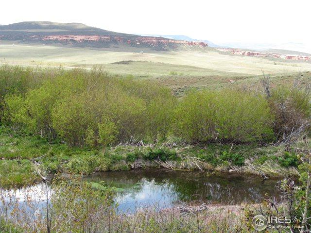 0 W County Road 89, Red Feather Lakes, CO 80545 (MLS #824709) :: 8z Real Estate