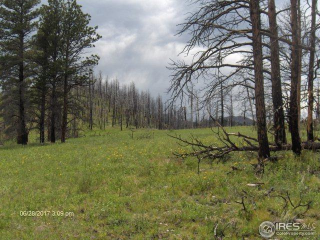 0 Rist Creek, Bellvue, CO 80512 (MLS #824995) :: Downtown Real Estate Partners