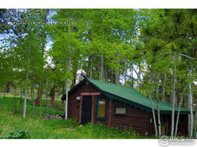 133 Highway 7 Business, Allenspark, CO 80510 (MLS #825020) :: 8z Real Estate