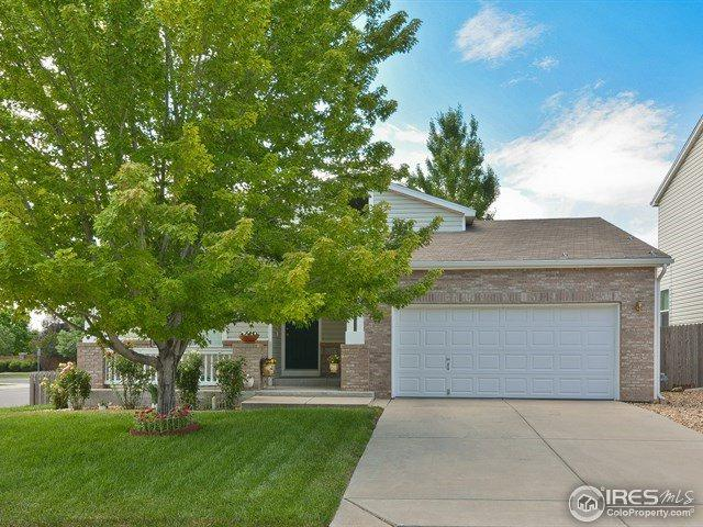1363 Mcclure Dr, Longmont, CO 80504 (MLS #825079) :: 8z Real Estate
