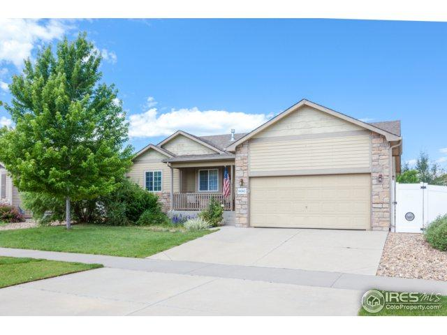 16365 9th St, Mead, CO 80542 (MLS #825124) :: 8z Real Estate