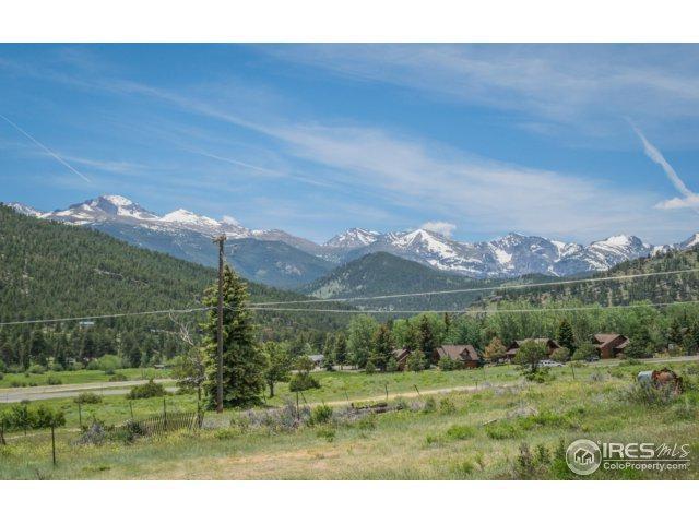 1401 High Dr, Estes Park, CO 80517 (MLS #825243) :: 8z Real Estate