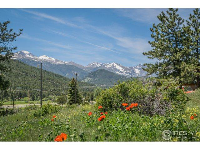 Columbine Dr, Estes Park, CO 80517 (MLS #825250) :: 8z Real Estate