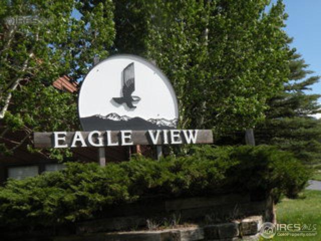1050 S Saint Vrain Ave #3, Estes Park, CO 80517 (MLS #825641) :: 8z Real Estate