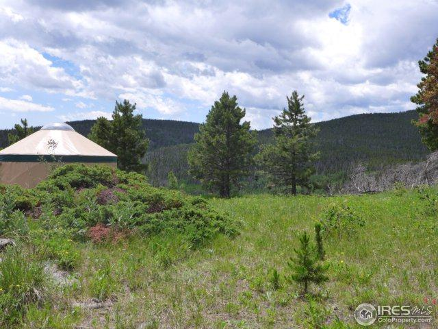 469 W Elk Horn Trl, Bellvue, CO 80512 (MLS #825921) :: 8z Real Estate