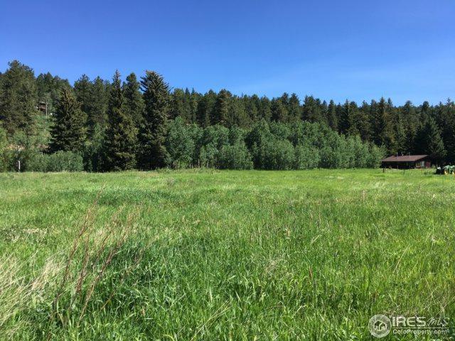 346 Beaver Creek Dr, Nederland, CO 80466 (MLS #825983) :: 8z Real Estate