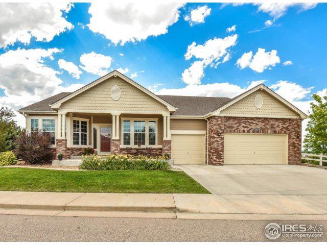 2785 Anchorage Ct, Loveland, CO 80538 (MLS #826011) :: 8z Real Estate