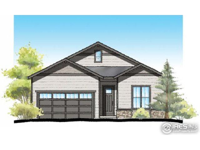 1103 102nd Ave, Greeley, CO 80634 (MLS #826015) :: 8z Real Estate