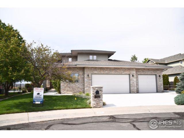 977 Thorncreek Ct, Thornton, CO 80241 (MLS #826111) :: 8z Real Estate