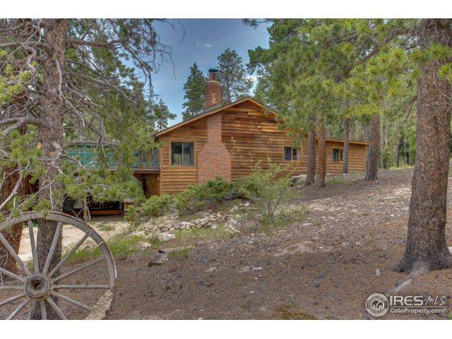 11 Eagles Nest Ln, Golden, CO 80403 (MLS #826134) :: 8z Real Estate