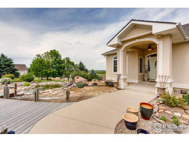 1763 Merlin Ln, Windsor, CO 80550 (MLS #826298) :: 8z Real Estate