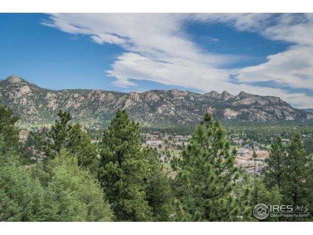 335 Parkview Ln, Estes Park, CO 80517 (MLS #826344) :: 8z Real Estate