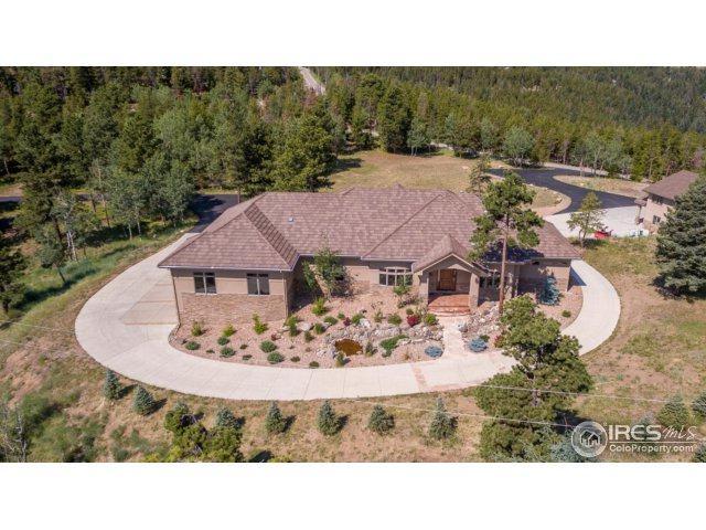 1551 Snyder Gulch Rd, Evergreen, CO 80439 (MLS #826621) :: 8z Real Estate