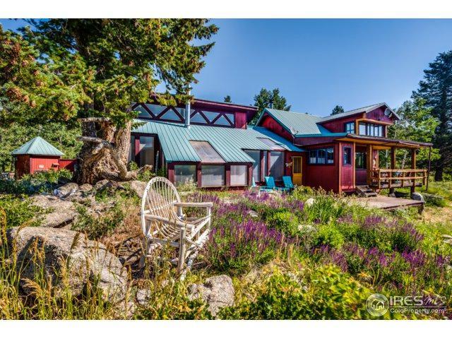 748 Pine Glade Rd, Nederland, CO 80466 (MLS #826700) :: 8z Real Estate