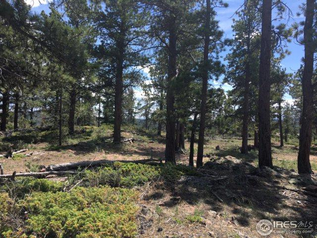 121 Atakapa Ct, Red Feather Lakes, CO 80545 (MLS #826737) :: 8z Real Estate