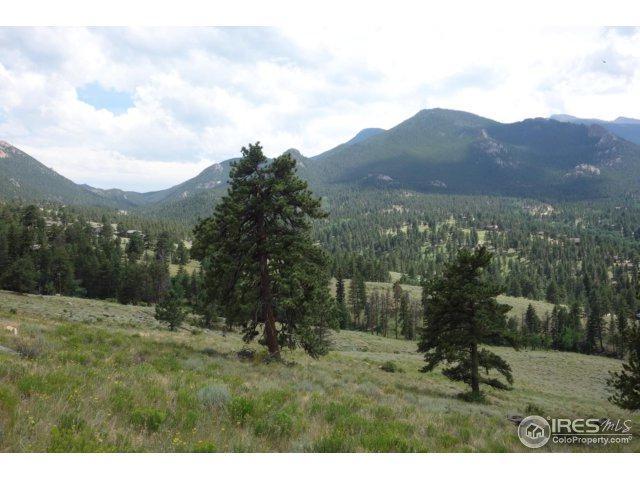 2000 Windcliff Dr, Estes Park, CO 80517 (MLS #826795) :: 8z Real Estate