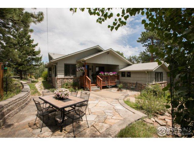 1042 Lexington Ln, Estes Park, CO 80517 (MLS #826829) :: 8z Real Estate