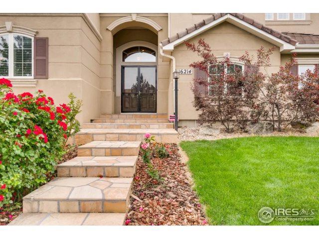 16214 E Lake Dr, Centennial, CO 80016 (MLS #826841) :: 8z Real Estate