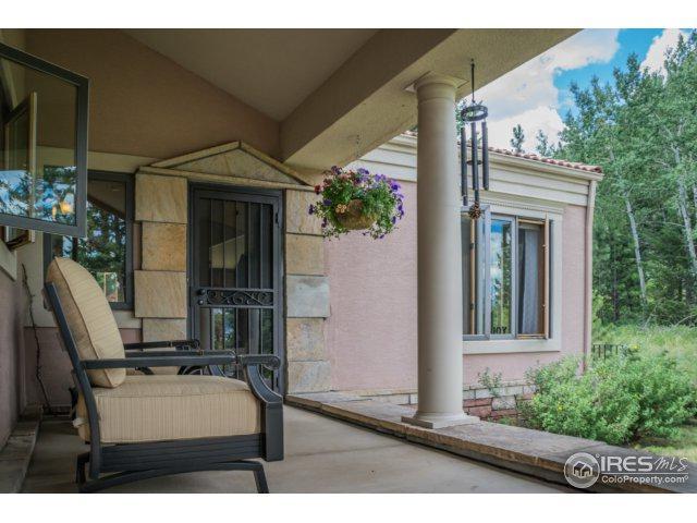 3333 Rockwood Ln, Estes Park, CO 80517 (MLS #827150) :: Colorado Home Finder Realty