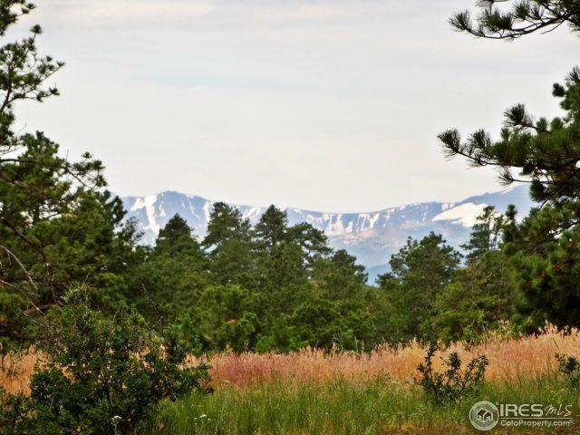 136 Parkview Peak Dr, Livermore, CO 80536 (MLS #827268) :: Kittle Real Estate