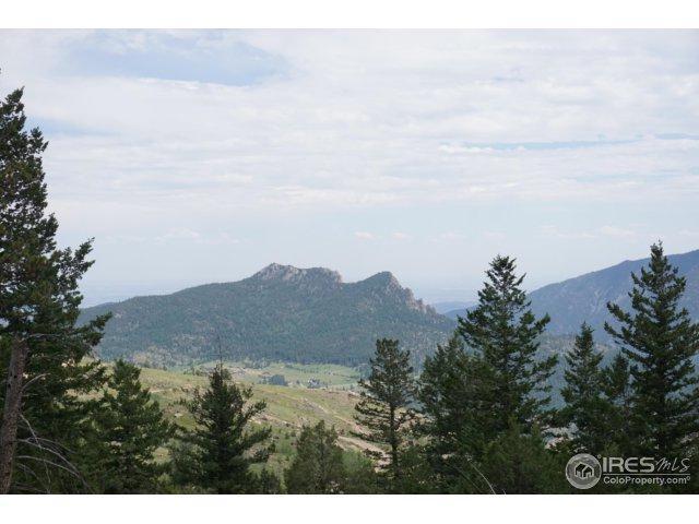 0 Horsemint Valley Dr, Drake, CO 80515 (MLS #827523) :: 8z Real Estate