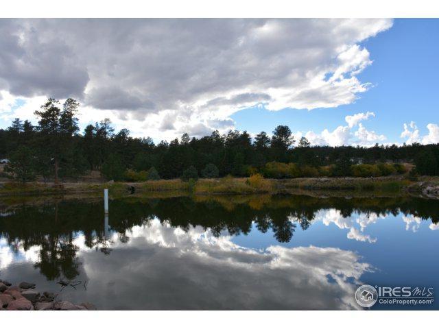 48 Humboldt Dr, Livermore, CO 80536 (MLS #827535) :: Kittle Real Estate