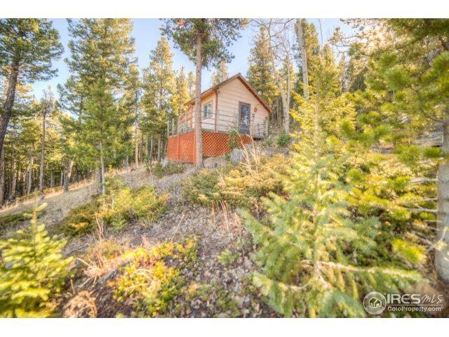 1500 Warren Gulch Rd, Idaho Springs, CO 80452 (MLS #827546) :: 8z Real Estate