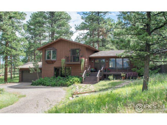 510 Hondius Cir, Estes Park, CO 80517 (MLS #827729) :: 8z Real Estate