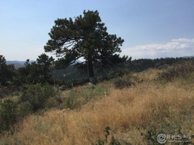 0 Mount Sherman Ct, Livermore, CO 80536 (MLS #828276) :: Kittle Real Estate