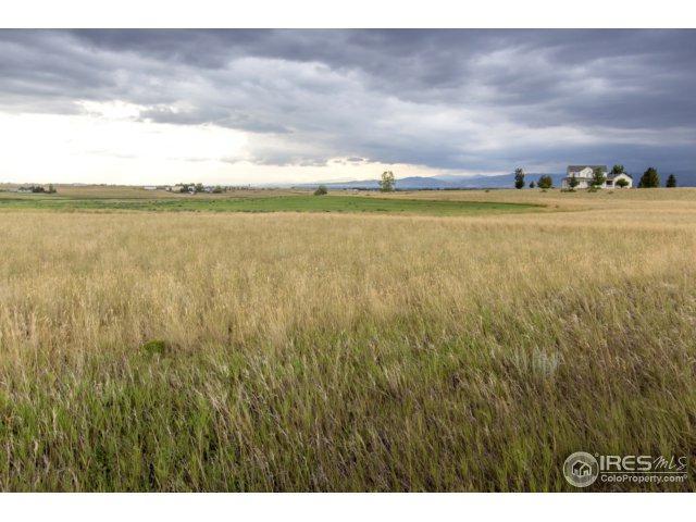5839 Dakota Ct, Wellington, CO 80549 (MLS #828392) :: 8z Real Estate