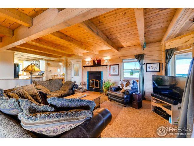 5315 Best Rd, Larkspur, CO 80118 (MLS #828394) :: 8z Real Estate