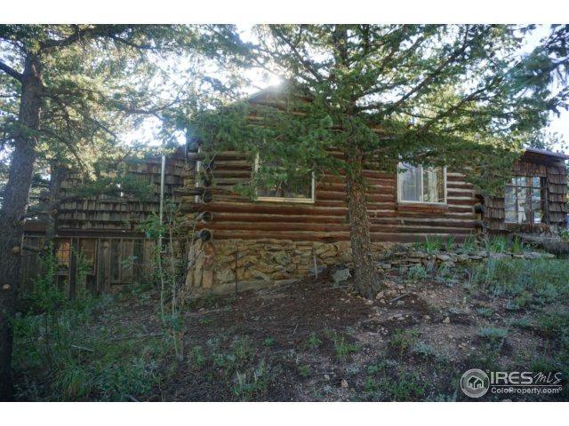 629 Ski Rd, Allenspark, CO 80510 (MLS #828417) :: 8z Real Estate