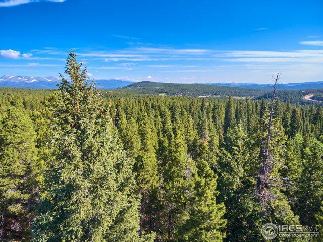 0 Aspen Rd, Black Hawk, CO 80422 (MLS #828425) :: 8z Real Estate