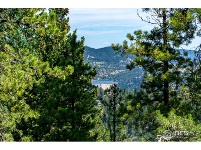 93 Gross Dam Rd, Golden, CO 80403 (MLS #828507) :: 8z Real Estate