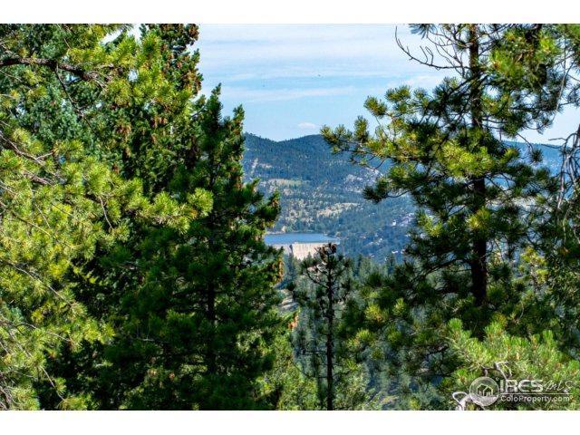 93 Gross Dam Rd, Golden, CO 80403 (#828507) :: The Peak Properties Group