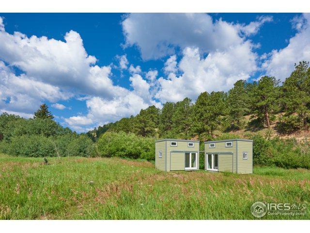 545 Caribou Rd, Nederland, CO 80466 (MLS #828534) :: 8z Real Estate