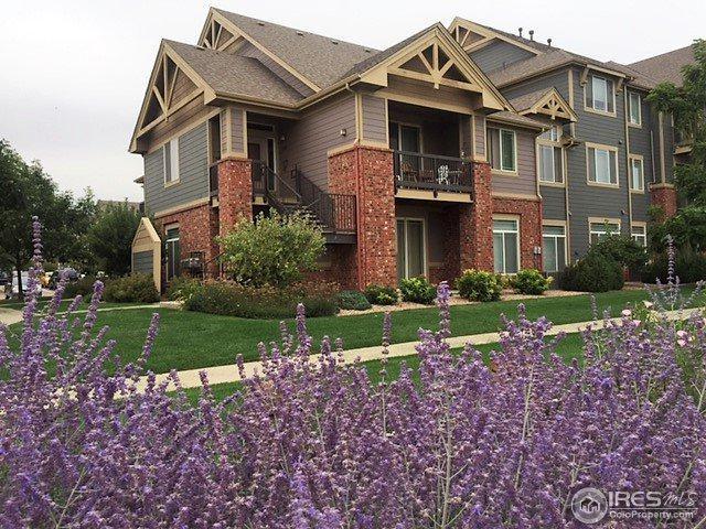 804 Summer Hawk Dr #3101, Longmont, CO 80504 (MLS #828616) :: 8z Real Estate