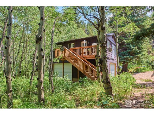 1644 Cold Springs Rd, Nederland, CO 80466 (MLS #828631) :: 8z Real Estate