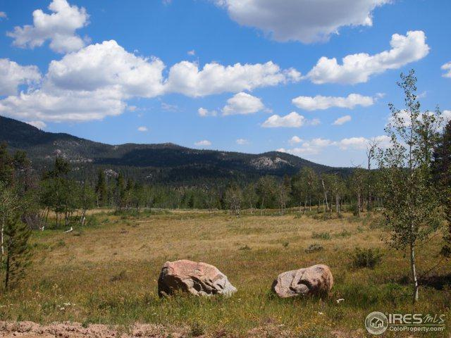 22 Tami Rd, Red Feather Lakes, CO 80545 (MLS #828735) :: 8z Real Estate