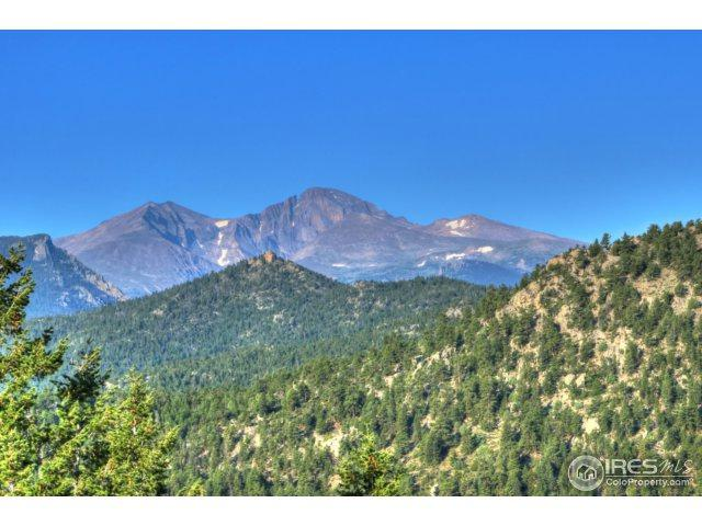 0 Pole Hill Rd, Estes Park, CO 80517 (MLS #828767) :: 8z Real Estate